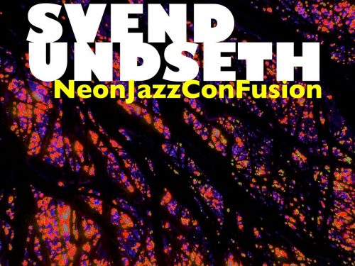 neonjazz-confusion cover